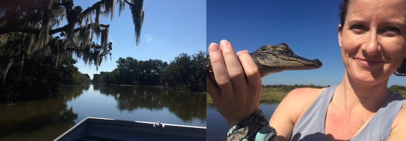 aiga-swamp